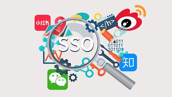 CSM - SSO.jpg