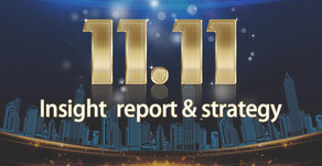 Insights Report - 11.11