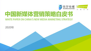 Insights Report - KOL Marketing On China New Media