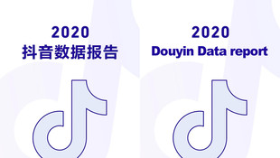 Insight Report - Douyin Data Report