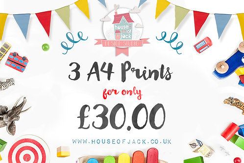 Birthday Special Offer 3 A4 prints for £30