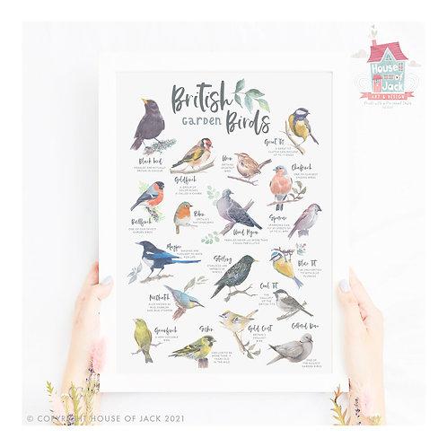 British Nature - Garden Birds Art Print