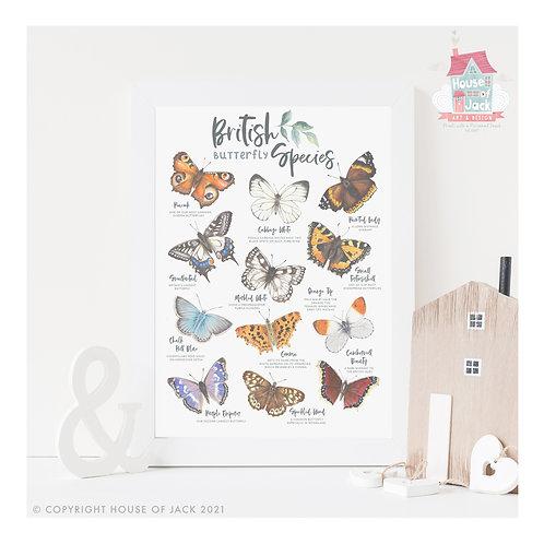 British Nature - Butterfly Spicies Art Print