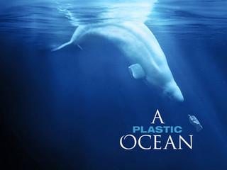 Projekce filmu A Plastic Ocean