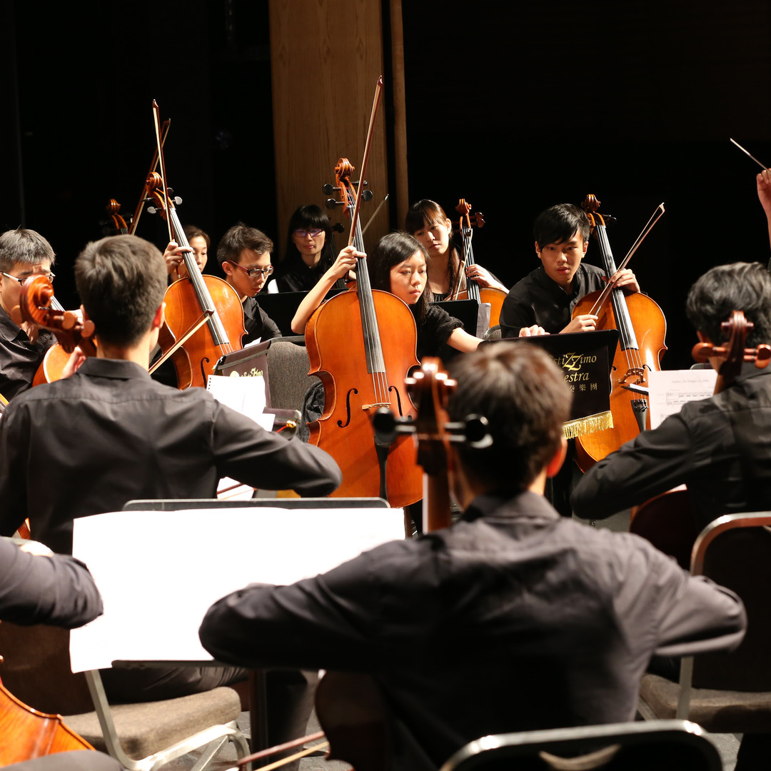 Cello Orchestra Concert 3.JPG