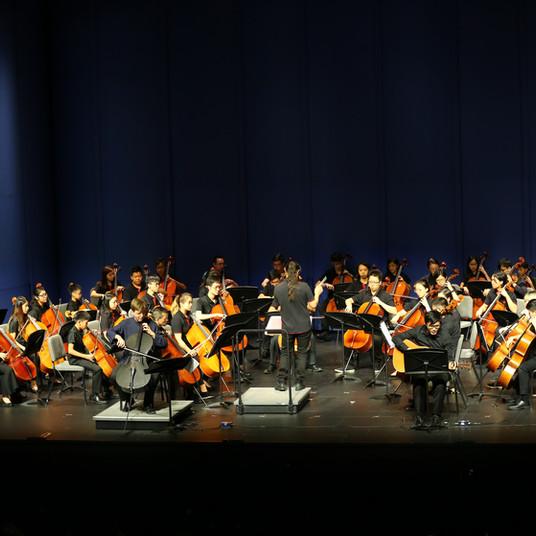 Cello Orchestra Concert 1