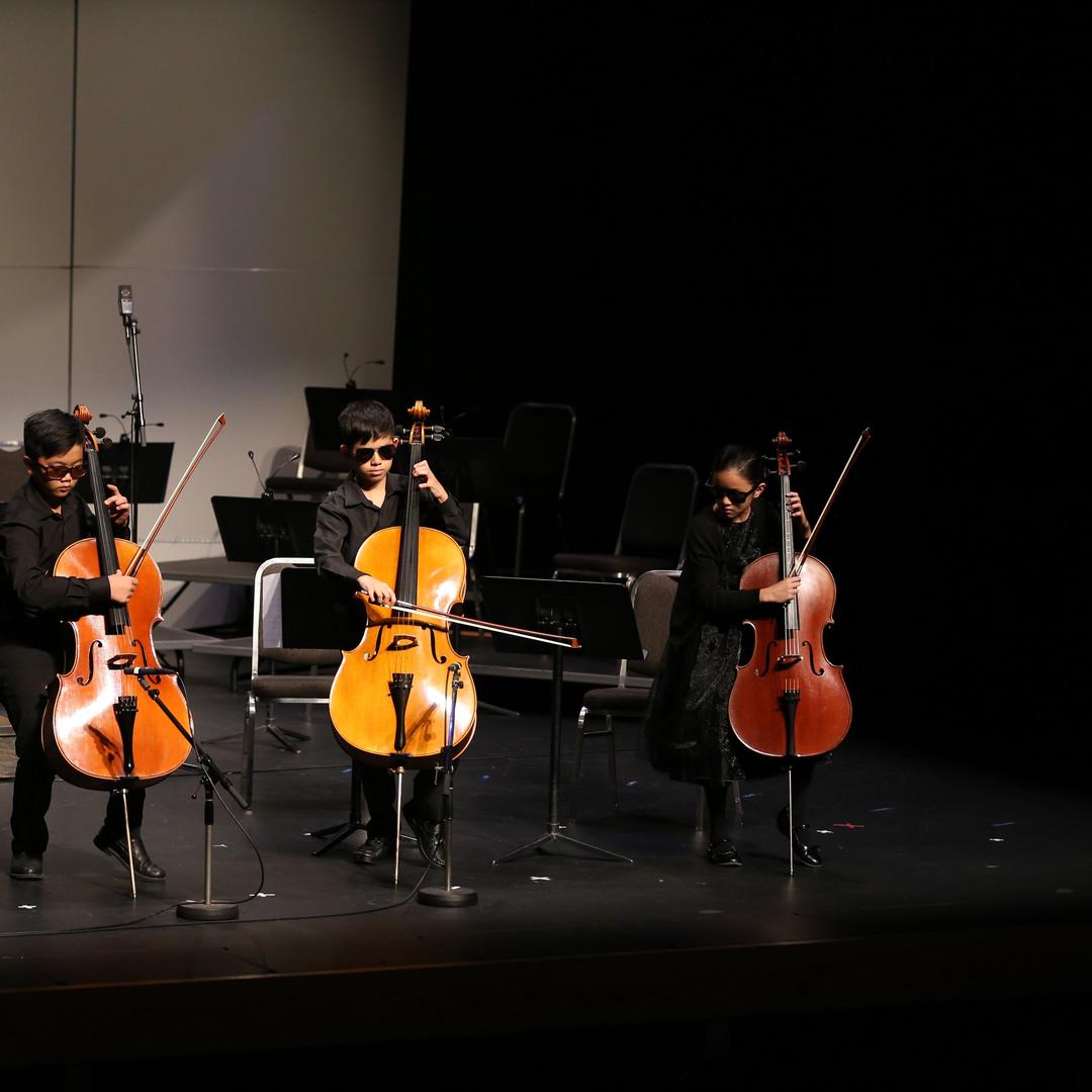 Cello quartet bumble bee.JPG