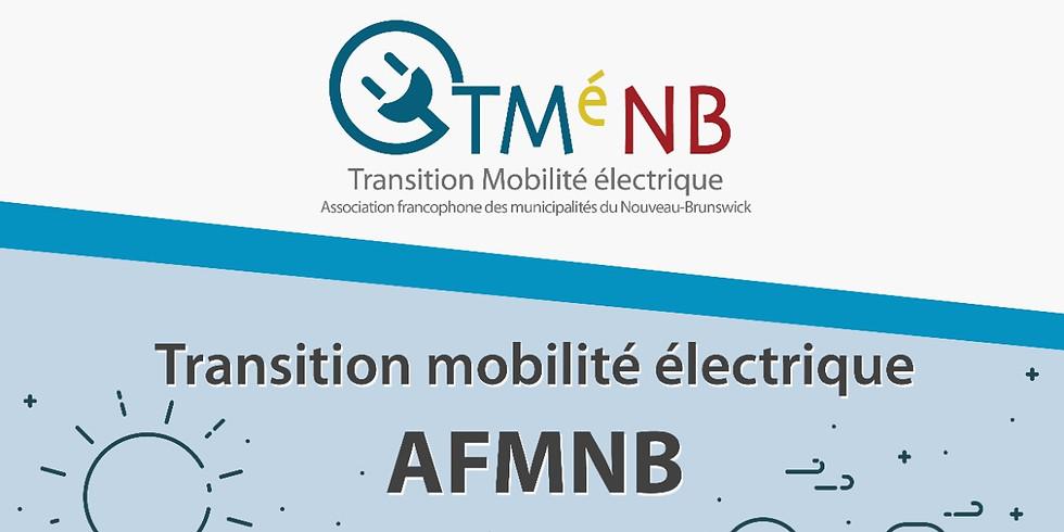Webinaires - Transition mobilité électrique 2