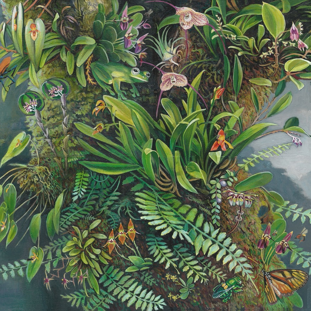 Painting of a biodiverse Costa Rican rainforest with orchids, frogs, bees and butterflies