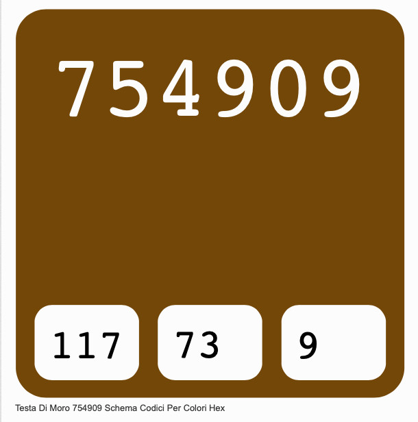 The haxadecimal colour code for the shade of dark brown known as 'Testa di Moro'