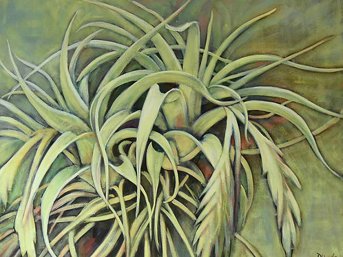 Bromelia, bromeliad plant family, green stems, original painting by Deirdre Hyde, White City Gallery London