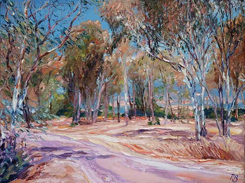 David Porteous-Butler 'Eucalyptus Grove II' 61x46cm White City Gallery London Oil on canvas Palette knife painting Landscape