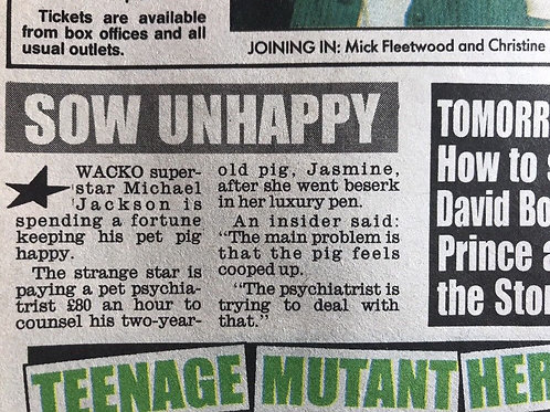 1990 'Sow Unhappy' Michael Jackson's Pet Pig Daily Mirror Article