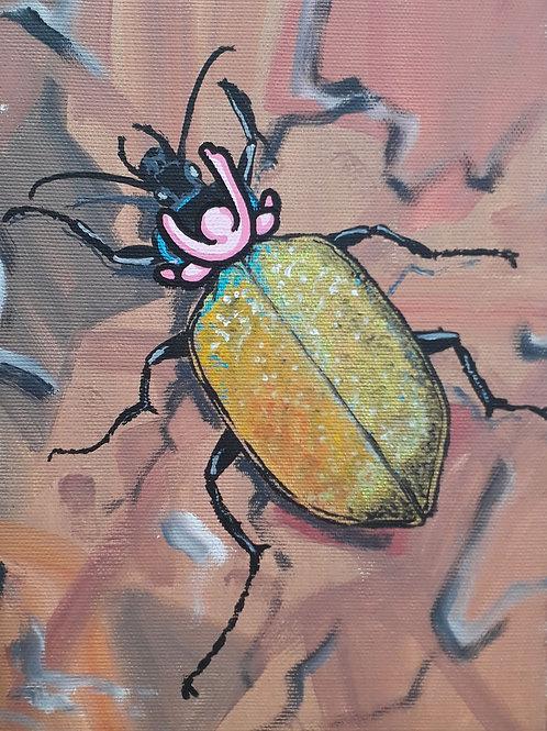 White City Gallery presents 'Scarabeo Arcobaleno' by street artist ALUA (Christian Aloi) Rainbow beetle rodeo. exploitation.