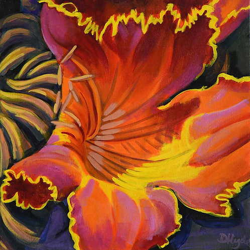 Flame of the Forest (Spathodea flor Llama del bosque flower Costa Rica) original painting by Deirdre Hyde, White City Gallery