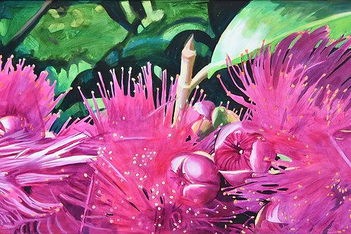 'Manzana de Agua I' (syzygium malaccense, water apple flower) original painting by Deirdre Hyde, White City Gallery London