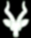 Antelope_Logo_White_Sm.png