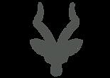 Antelope Water Managment Logo head