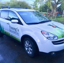 Youngs Tree & Forestry Vehicle