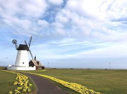 Flats-windmill