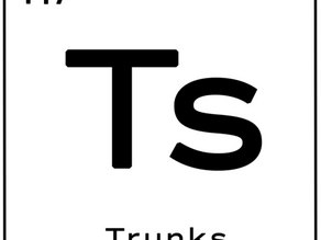 T's Trunks: Using Social Media to Capture the Younger Generation