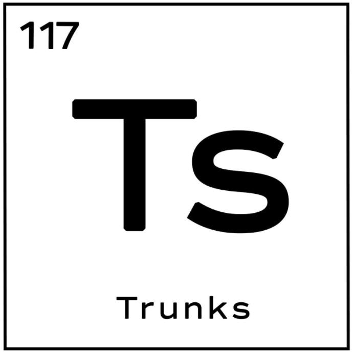 T's Trunks logo