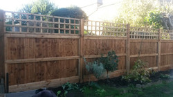 Rear view of our closeboard fencing
