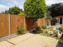 Closeboard Fencing panels