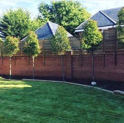 Wall top Contemporary Fencing