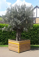 London garden planter supplier made to size.