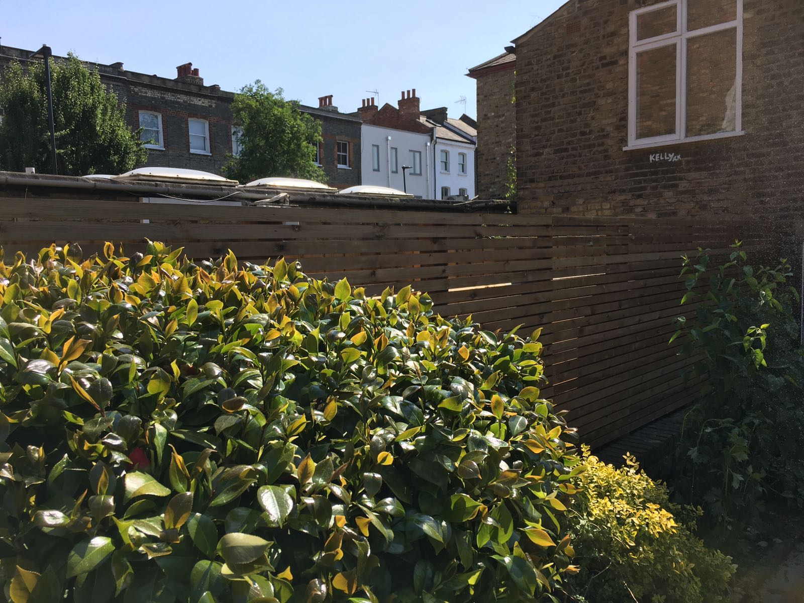 Contemporary Fencing in Hackney