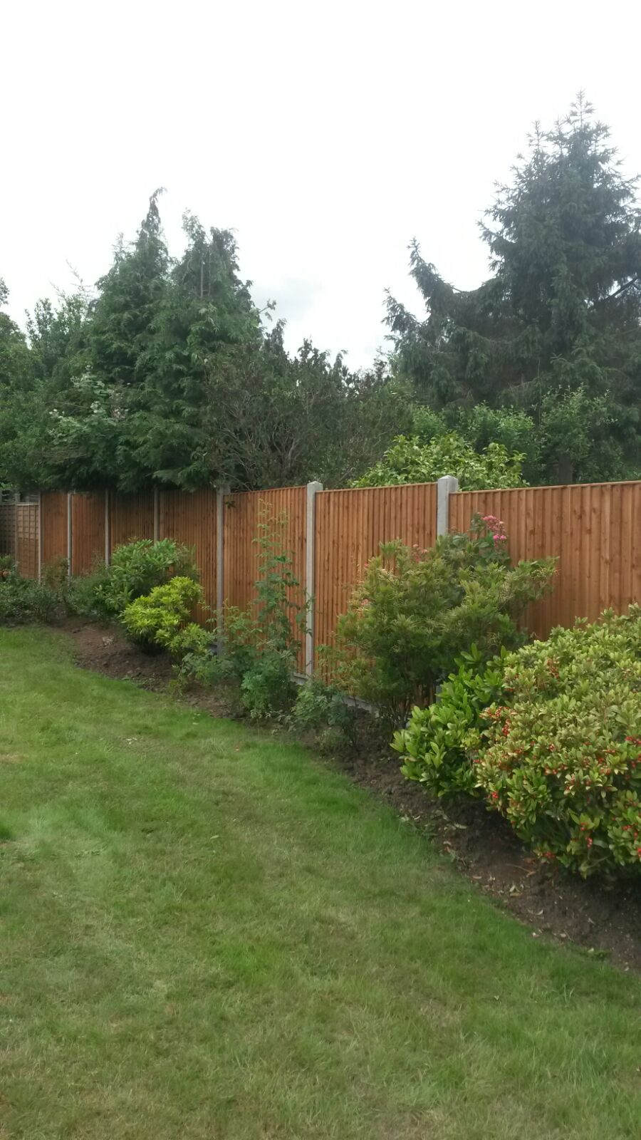 Closeboard Fencing made to size