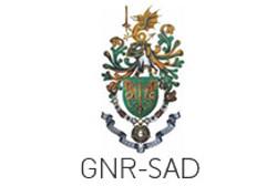 GNR-SAD em Regime Livre