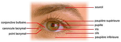 cataracte1.jpg