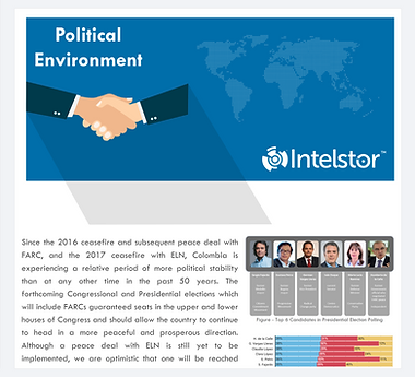 IntelStor™ Political Environment