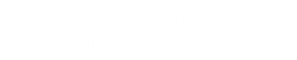 IntelStor Logo + Name White.png