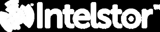 IntelStor™