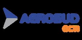 Octi Logo.png