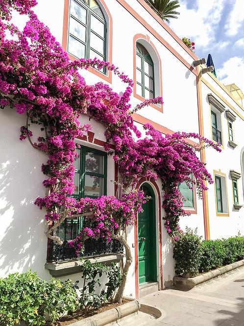 Hauseingang unter Blumen
