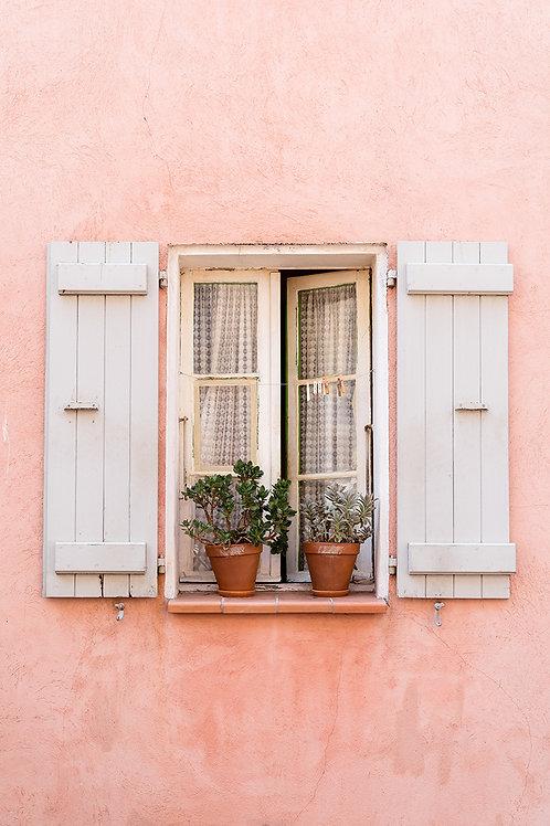 Fenster Rosa