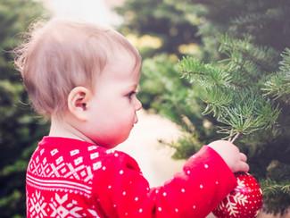Where to buy your real Christmas tree