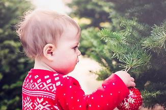 Criança em Christmas Tree Farm