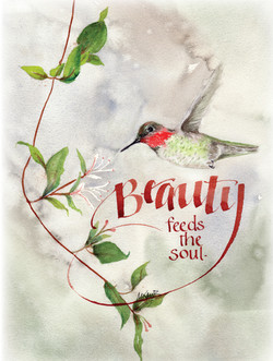 Mayhummingbird beauty