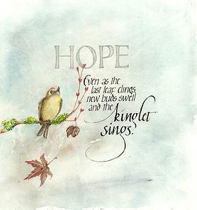 kinglet hope sized.jpg