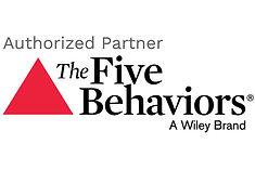 5-behaviors-epiphany-consulting-wv.jpg