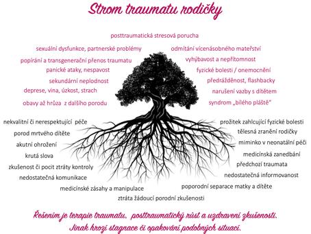 O porodu, traumatech a rozšířených stavech vědomí