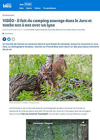 """Lire l'article : """"Il fait du camping dans le Jura et tombe nez à nez avec un lynx"""""""
