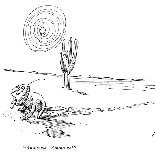 Ammonia! Ammonia!, New Yorker 1962