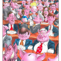 Congress Swine