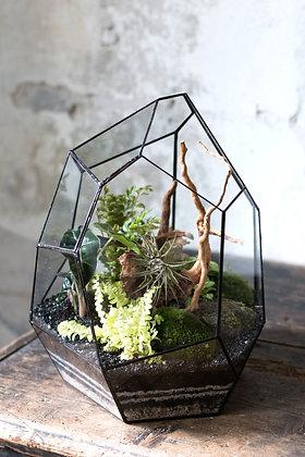 Rastlinné terárium 'Tiffany' L